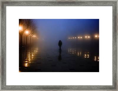 Back Home Alone Framed Print