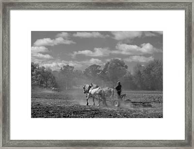Back In The Day Framed Print by Jodi Pflepsen