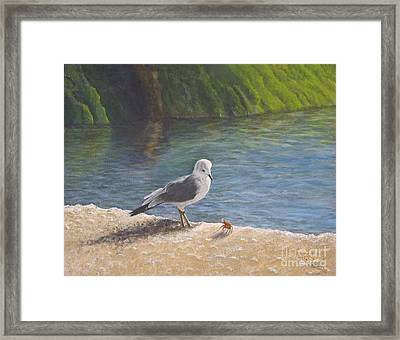 Back Off Framed Print by Cindy Lee Longhini