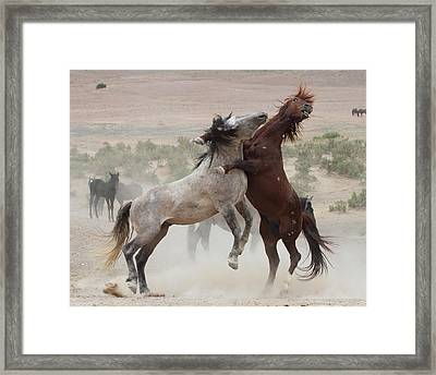 Back Off Framed Print by Gene Praag