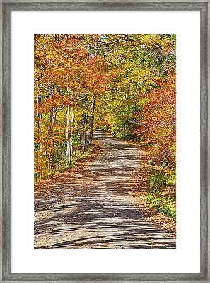 Back Road Daydream Framed Print by Gregory W Leary