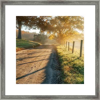 Back Road Morning Square Framed Print