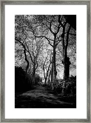 Back Road West Framed Print