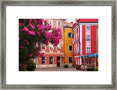 Back Streets Of Izola Slovenia Framed Print