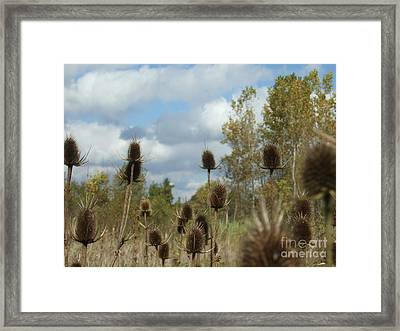 Framed Print featuring the photograph Back To Nature by Deborah DeLaBarre