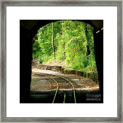 Back Tracking Framed Print by Joy Hardee