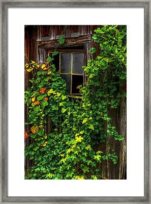 Back Window Framed Print by Russ Burch