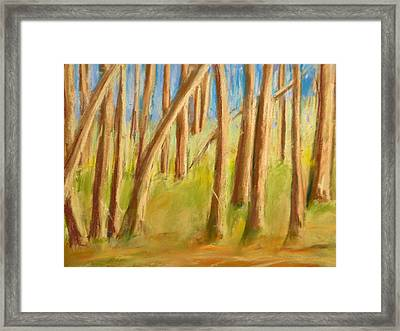 Back Yard Framed Print by Valerie Lynch