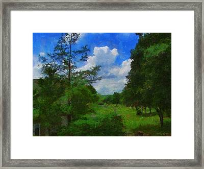 Back Yard View Framed Print by Jeffrey Kolker