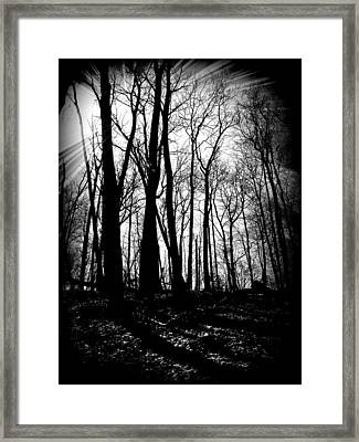 Backdunes In April Framed Print by Michelle Calkins