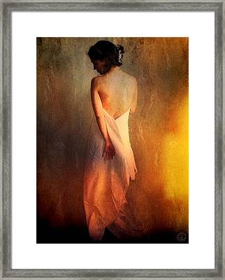 Backlight Framed Print by Gun Legler
