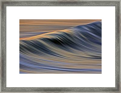 Framed Print featuring the photograph Backlit Gold C6j0150 by David Orias