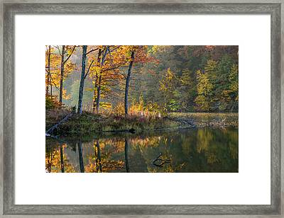 Backlit Trees On Lake Ogle In Autumn Framed Print by Chuck Haney