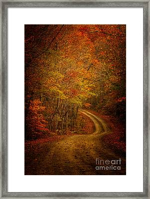 Backroad Color Framed Print by Larry McMahon