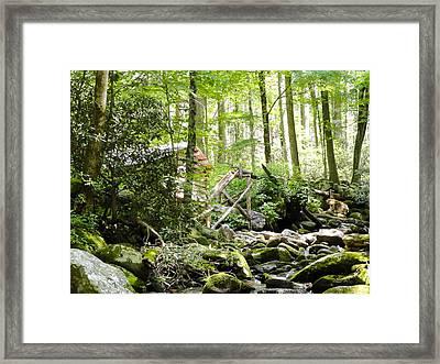 Backside Ogle Tub Mill  Framed Print by Cynthia Woods