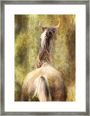 Backside Framed Print by Sabine Peters
