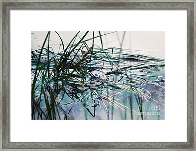 Backwater In Blues Framed Print