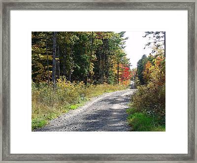 Backwoods Road In Autumn Framed Print by Janet Ashworth