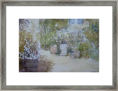 Backyard Beauty Framed Print