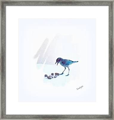 Backyard Bird Framed Print by YoMamaBird Rhonda
