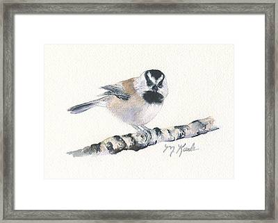 Backyard Busybody - Mountain Chickadee Framed Print
