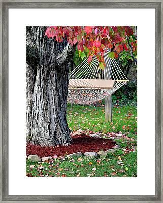 Backyard Hammock Framed Print