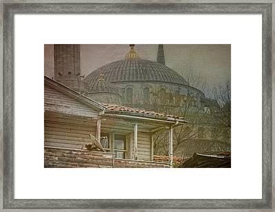Backyard Splendor Framed Print by Joan Carroll