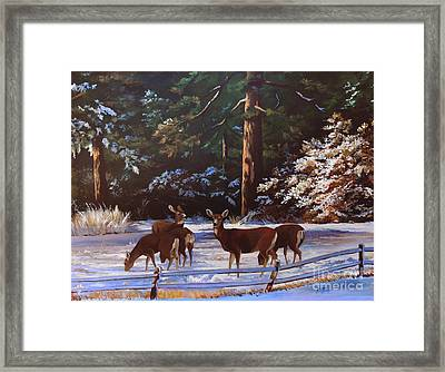 Backyard Visitors Framed Print