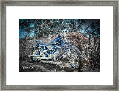 Bad Boy Framed Print by William Reek