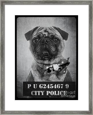Bad Dog Framed Print by Edward Fielding