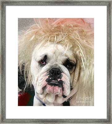 Bad Hair Day Framed Print