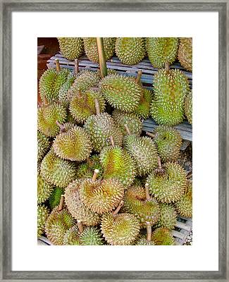 Bad Smelling But Good Tasting Durian At A Stand Near Phrae-thail Framed Print by Ruth Hager