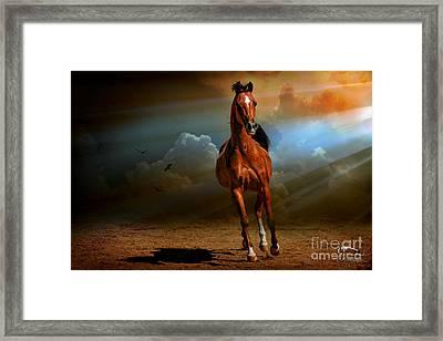 Badawi Framed Print by Karen Slagle