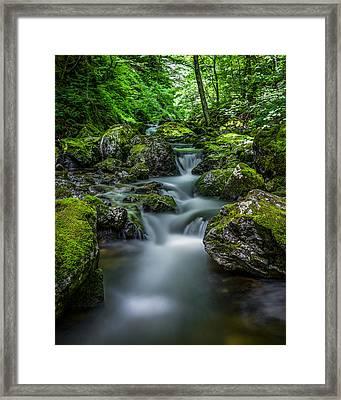 Baddeck River Portrait 2 Framed Print