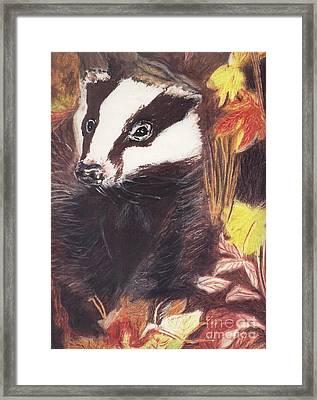 Badger In The Fall. Framed Print by Ann Fellows