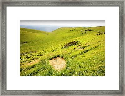 Badger Sett Framed Print by Ashley Cooper