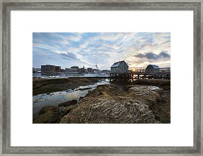 Badgers Island Framed Print by Eric Gendron