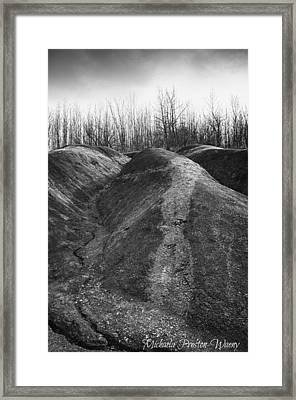 Framed Print featuring the photograph Badlands 2 by Michaela Preston
