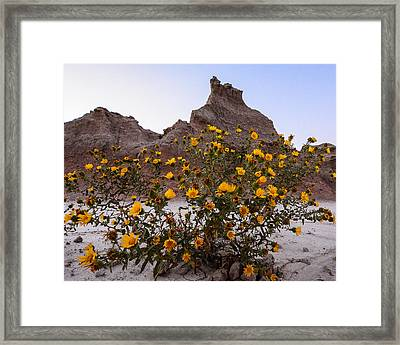 Badlands Framed Print by Robin Williams