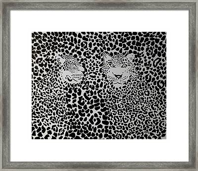 Badlepard  Framed Print