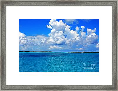 Bahama Blues 5 Framed Print by Alison Tomich