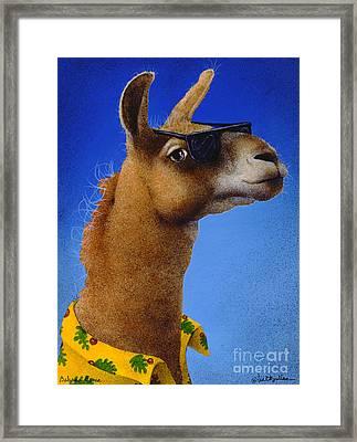 Bahama Llama... Framed Print by Will Bullas