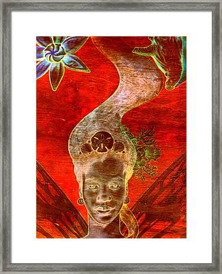 Bahama Mama Framed Print by Randall Weidner