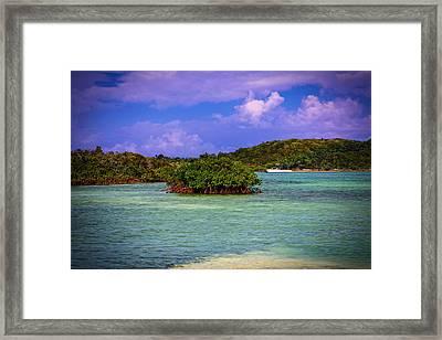 Bahamas-half Moon Cay Lost Lagoon Framed Print by Eti Reid