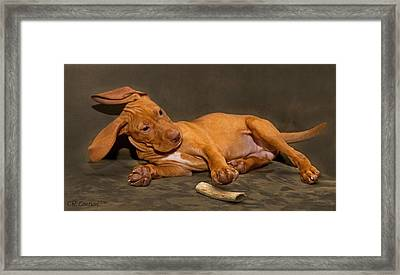 Bailey And Her Bone Framed Print by CR  Courson