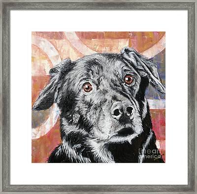 Bailey Framed Print by PainterArtist FINs husband Maestro