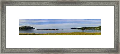 Bailey's Mistake Panorama Framed Print by Marty Saccone