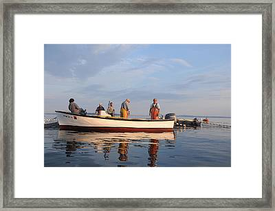 Framed Print featuring the photograph Bait Fishers by Paul Miller