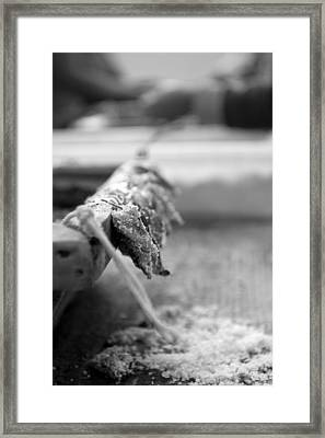 Bait On Hooks  Framed Print