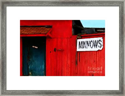 Bait Shop 20130309-2 Framed Print by Wingsdomain Art and Photography